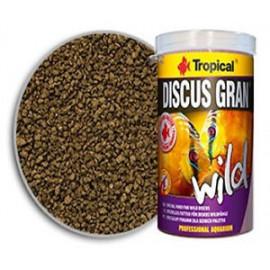 DISCUS GRAND WILD