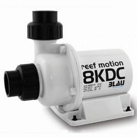 REEF MOTION 8KDC