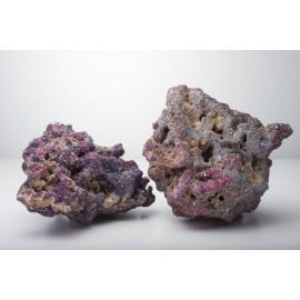 Roca Artificial LIFE ROCK ORIGINAL, CARIB SEA