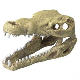 CROCODILE HEAD M 19.5x9.5x10.5cm AQUA DELLA