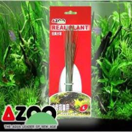 Planta seda Blyxa Japonica 6'' Azoo