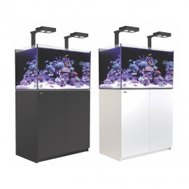 Reefer 250 Deluxe con kit y luz led