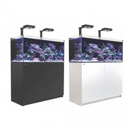 Reefer 350 Deluxe con kit y luz led