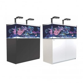 Reefer XL 425 Deluxe con kit y luz led
