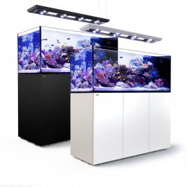 Reefer Peninsula 650 DELUXE Acuario, mesa, sump , luz led y kit montaje