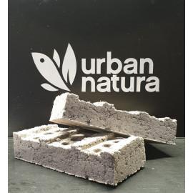 Biohome Brick