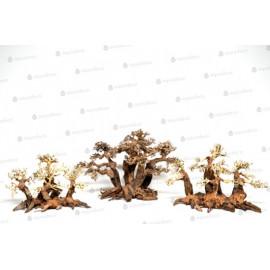 Forest Bonsai S
