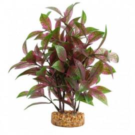 FLUVAL AQUALIFE PLANT VARIADAS 20CM Hygrophila Roja