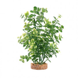 FLUVAL AQUALIFE PLANT VARIADAS 20CM Ludwigia Roja