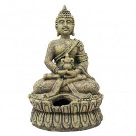 BUDA OR171
