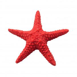 Estrella de mar roja 15,5 cm
