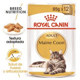 Royal Canin Maine bolsas Coon Adult 85gr