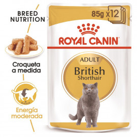Royal Canin Gato Adulto British Shorthair bolsas 85g