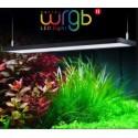 Serie WRGB2