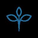 Hojas, cocos y compañia para biotopos